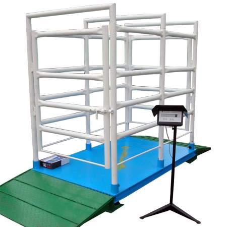 ВП STP весы платформенные технологические